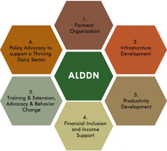 alddn components